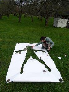 crtam na travi